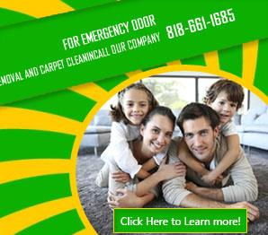 Carpet Cleaning Services - Carpet Cleaning Canoga Park, CA